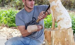 11. Međunarodna studentska kiparska radionica u drvu Jarčevac
