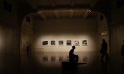 Završna izložba studenata Odsjeka za vizualane i medijske umjetnosti